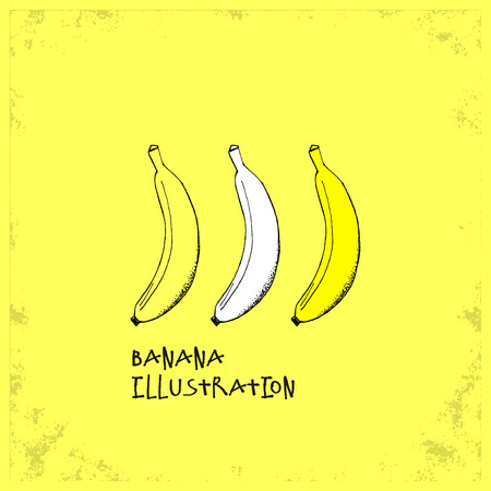 hand drawn cartoon: Cartoon Style Banana Illustration - Detailed Crafted Hand Drawn Doodle Colored Sketch - Graphic and Infographic and Food Resource from Healthy Fruit Collection - Vector Illustration Illustration