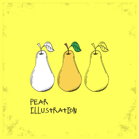 crafted: Cartoon Style Pear Illustration - Detailed Crafted Hand Drawn Doodle Colored Sketch - Graphic and Infographic and Food Resource from Healthy Fruit Collection - Vector Illustration