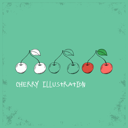 cherry: Cartoon Style Cherry Illustration - Detailed Crafted Hand Drawn Doodle Colored Sketch - Graphic and Infographic and Food Resource from Healthy Fruit Collection - Vector Illustration Illustration