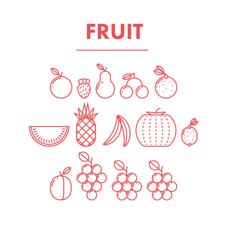 variant: Simple Thin Flat Line Fruit Icons. Outline stroke variant. Infographic graphic design resource. Promotion of healthy and fresh food. Vector Illustration