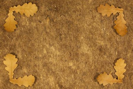oak leaves: background for letters with oak leaves on felt Stock Photo
