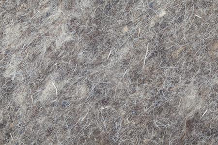 grey rug: the background felt