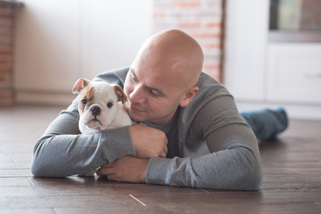 snotty: Handsome bold man together with english bulldog puppy