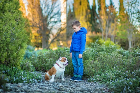 snotty: Cute handsome stylish boy enjoying colourful autumn park with his best friend red and white english bull dog. Stock Photo