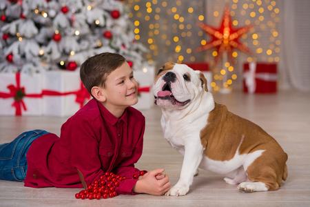 Christmas Holidays. handsome boy enjoy life time with his friend english bulldog close to new year tree with plenty presents around.Magic Christmas Stock Photo