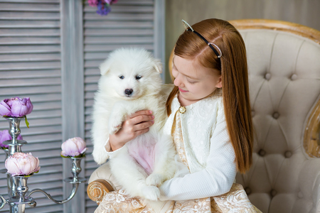 Portrait of ginger hair girl play with husky poppy.Model girl with red hair posing in studio shoot with sammy white puppy while sitting on royal retro armchair wearing cute dress