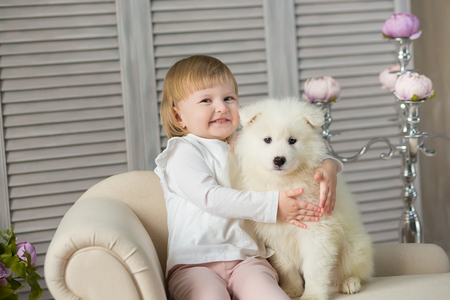 Portrait of blond baby girl play with husky puppy.Model girl with blond hair posing in studio shoot with sammy white puppy while sitting on royal retro armchair sofa couch wearing cute dress