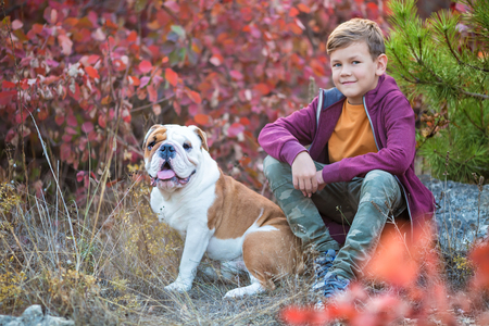 Cute handsome stylish boy enjoying colourful autumn park with his best friend red and white english bull dog.Delightfull scene of pretty boy together with bulldog in forest. Young teenager smiling