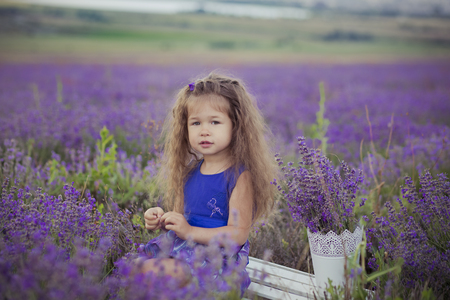 Iconic blond chestnut cute fancy dressed girl posing sit in center of lavender meadow field in velvet violet airy dress with basket bucket full of flowers happyly on vacation hollydays.