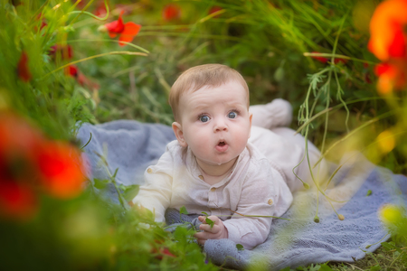 Adorable baby girl boy playing with red poppy flowers in a wheat field. Baby posing in rustic retro hat wearing cozy dress.