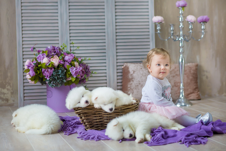 Blond girl posing with husky puppy white color in retro studio shoot. Cute young child play with puppy dogs in designed home decorations