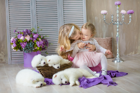Blond girl sisters posing with husky puppy white color in retro studio shoot. Cute young child sisters play with puppy dogs in designed home decorations