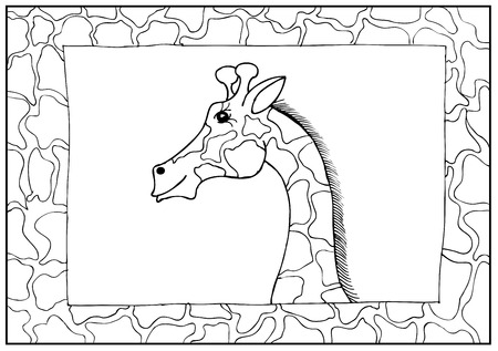 giraffa: Vector jirafa frontera
