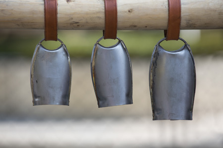 Detail of three metal sheep bells hanging on the wooden stick
