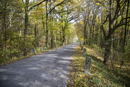 colored autumn and an old road with milestones 版權商用圖片