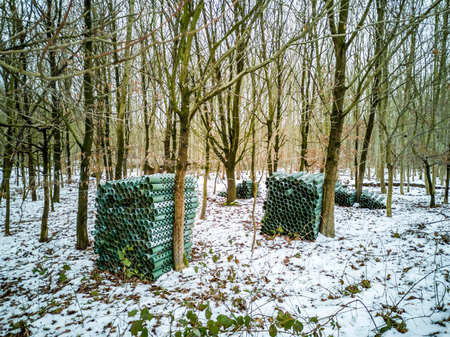 Tree guard system in the winter forest of Germany