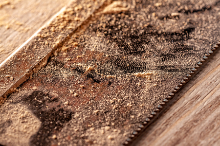 Close up of saw blade on wood floor