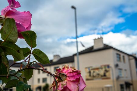 Derry, Londonderry / Northern Ireland - October 12 2019: The Bogside is a neigbourhoud outside the city walls of Derry