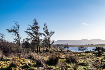 The landscape of the Sheskinmore Nature Reserve between Ardara and Portnoo in Donegal - Ireland