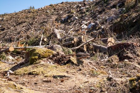 The deforested area at Bonny Glen in County Donegal - Ireland Banque d'images