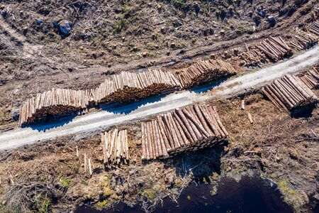 Aerial view of timber stacks at Bonny Glen in County Donegal - Ireland