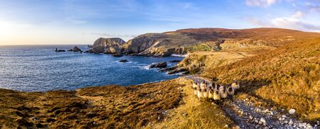 Aerial view of the beautiful coast by Port in County Donegal - Ireland