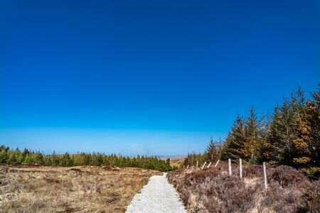 Path to Bonny Glen in County Donegal - Ireland