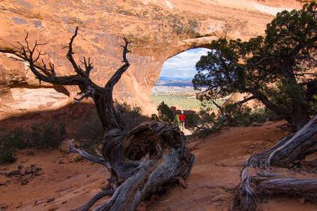 Partition Arch - Arches National Park, Utah, USA