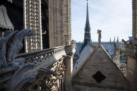Stone demons gargoyle on the Notre Dame - Paris