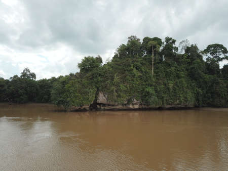 Ox Bow lake, Kinabatangan Borneo
