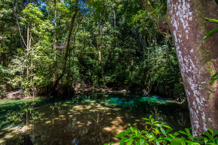 Crystal water in Melinau River, Mount Mulu, Sarawak, Borneo JANUAR 2019.