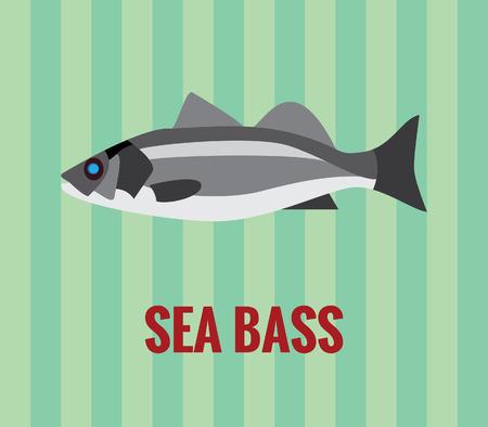 sea bass: Sea bass drawing on green background
