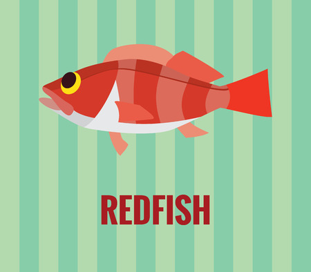 Drawing of deep water redfish on green background Illustration
