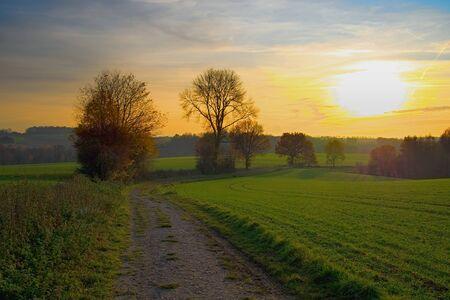 A dirt road lies between grassy fields during the autumn sunset. Heiligenhaus / NRW / Germany