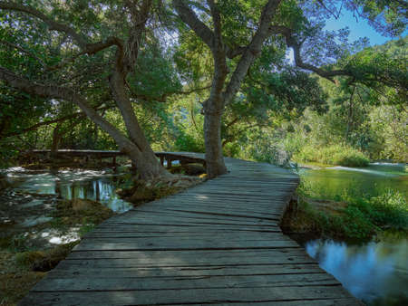 A wooden footbridge in a forest in the Krka National Park. Dalmatia, Croatia