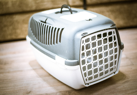 Small pet carrier for travelling isolated on wooden background Stock Photo