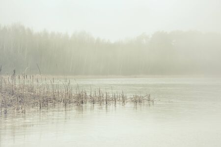 Forest lake covered with thick morning mist Banco de Imagens - 130732829