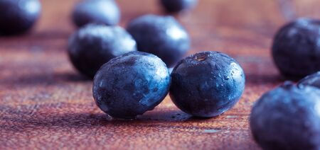 Blueberries are perennial flowering plants Banco de Imagens