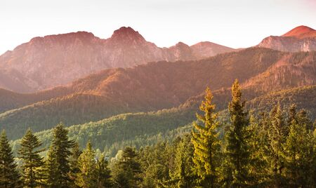 Giewont and Tatra Mountains panorama - autumn sunrise over rocky summits and pine forest hills