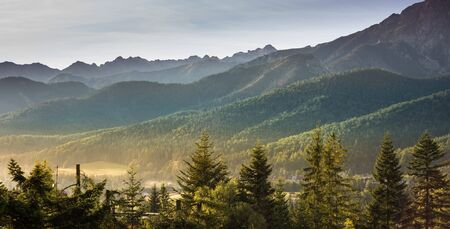 View from Koscielisko, Poland over to Tatra Mountains and green pine forest hills