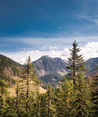 Kominiarski Wierch in Tatra Mountains, Poland - view from path to Grzes - trekking in autumn Banco de Imagens