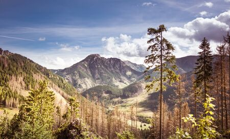 Kominiarski Wierch - rocky summit in Tatra Mountains, part of Carpathian Range