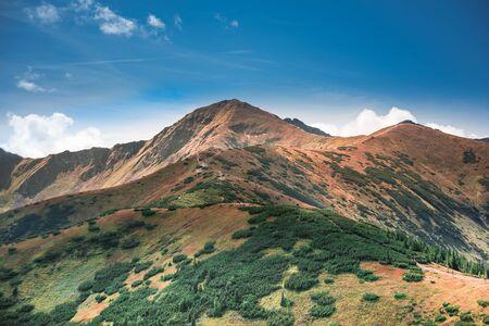Path in mountains - Tatra Mountains Range
