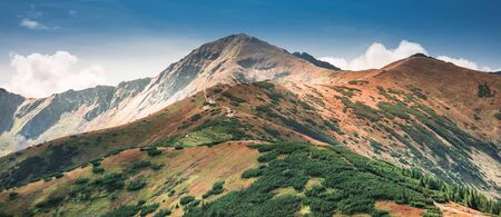 Panorama of Tatra Mountains with visible path leading to Wolowiec Summit Banco de Imagens