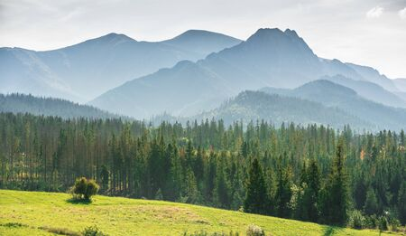 Misty Tatra Mountains - view from the village of Murzasichle