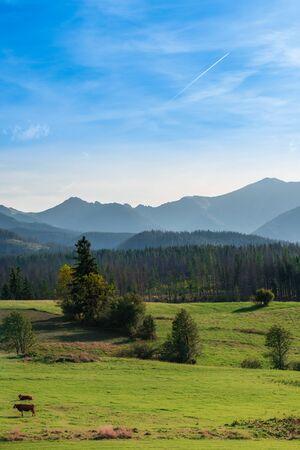 Rural landscape near Tatra Mountains in Poland