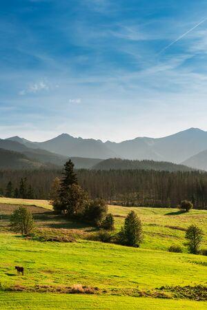 Tatra Mountain Range in Poland
