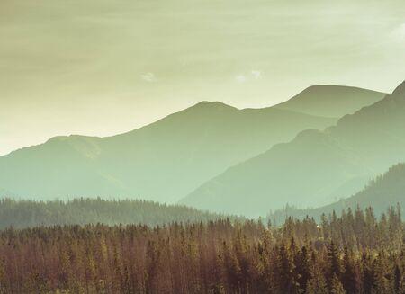 Mountain landscape - misty hills, forest Banco de Imagens