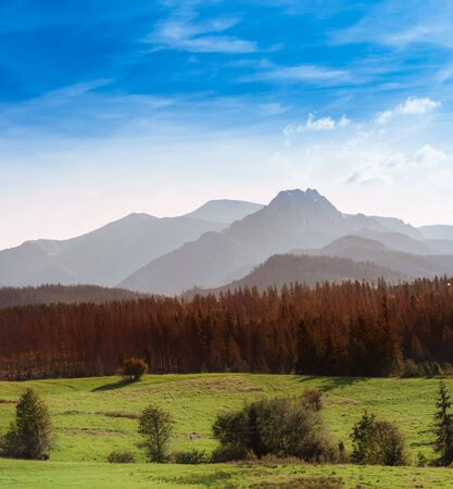 Beautiful rocky summits and colourful forest under blue sky - Tatra Mountains in Poland
