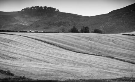 Fields after grain harvest in August - Scotland, Perthshire
